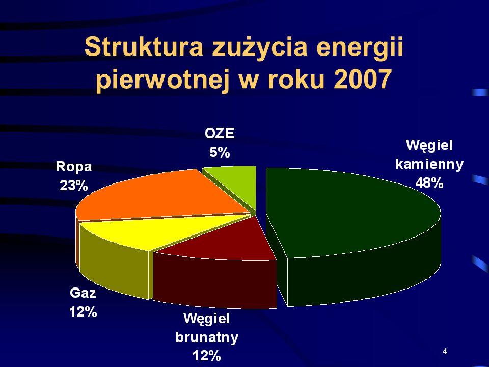 Struktura zużycia energii pierwotnej w roku 2007