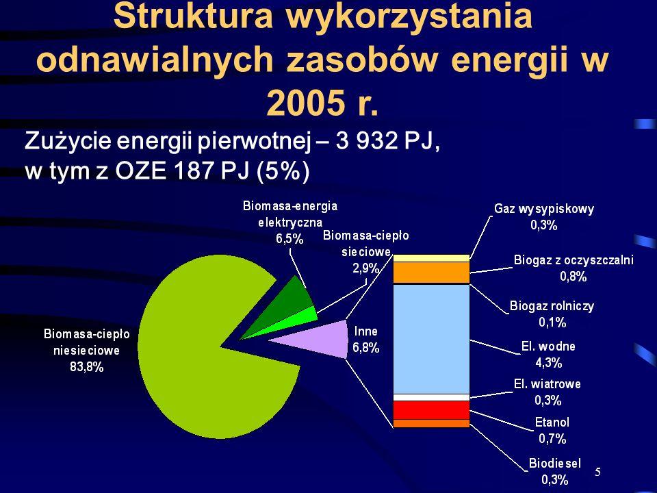 Struktura wykorzystania odnawialnych zasobów energii w 2005 r.
