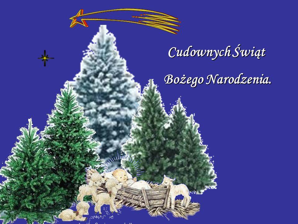 Cudownych Świąt Bożego Narodzenia.