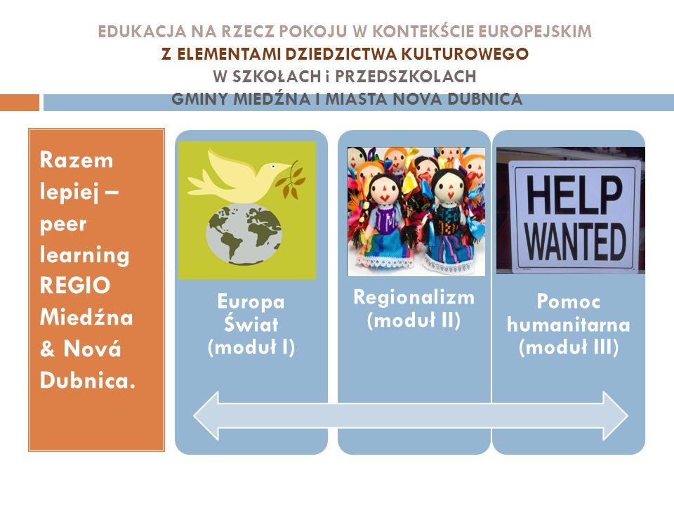 Regionalizm (moduł II) Pomoc humanitarna (moduł III)
