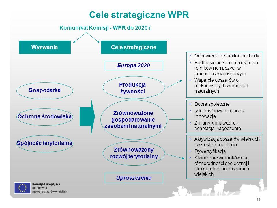 Cele strategiczne WPR Komunikat Komisji - WPR do 2020 r. Wyzwania