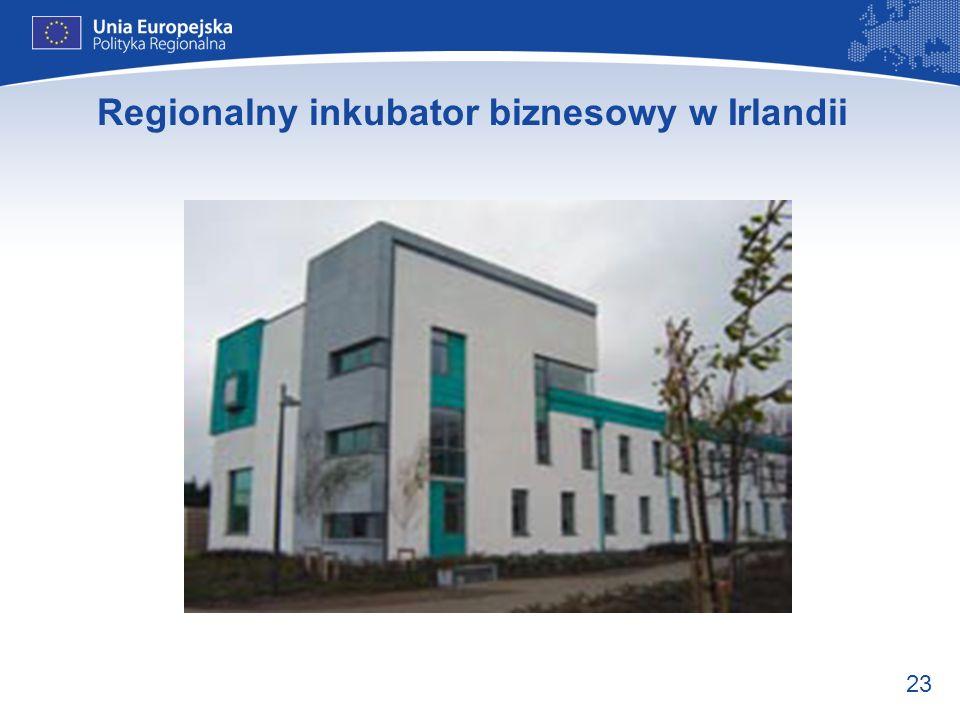 Regionalny inkubator biznesowy w Irlandii
