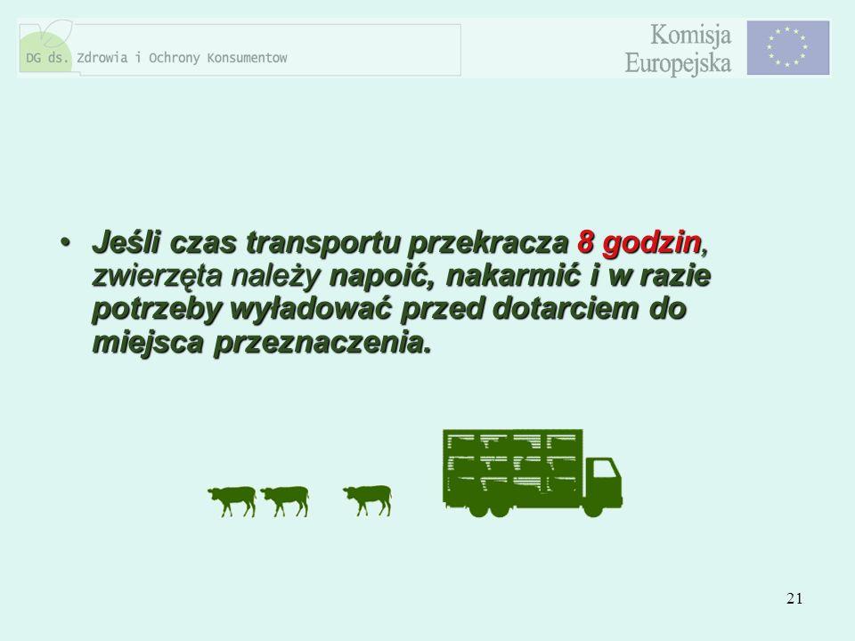 Jeśli czas transportu przekracza 8 godzin, zwierzęta należy napoić, nakarmić i w razie potrzeby wyładować przed dotarciem do miejsca przeznaczenia.