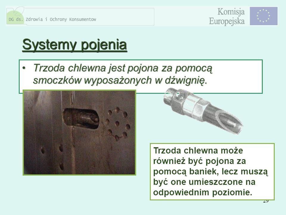 Systemy pojenia Trzoda chlewna jest pojona za pomocą smoczków wyposażonych w dźwignię.