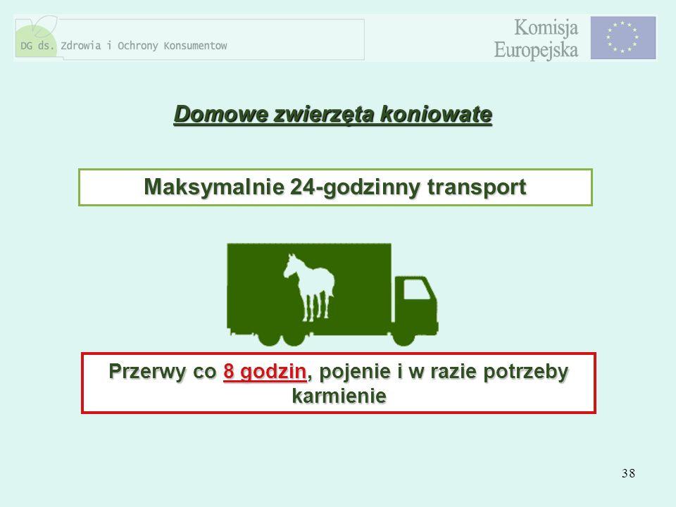 Domowe zwierzęta koniowate Maksymalnie 24-godzinny transport