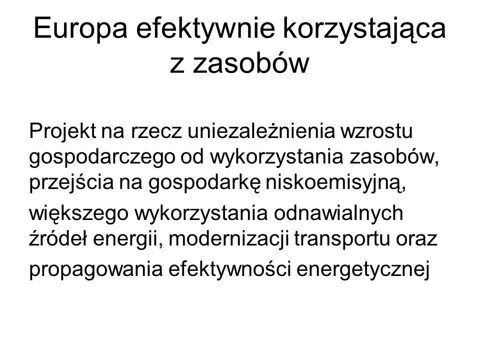 Europa efektywnie korzystająca z zasobów