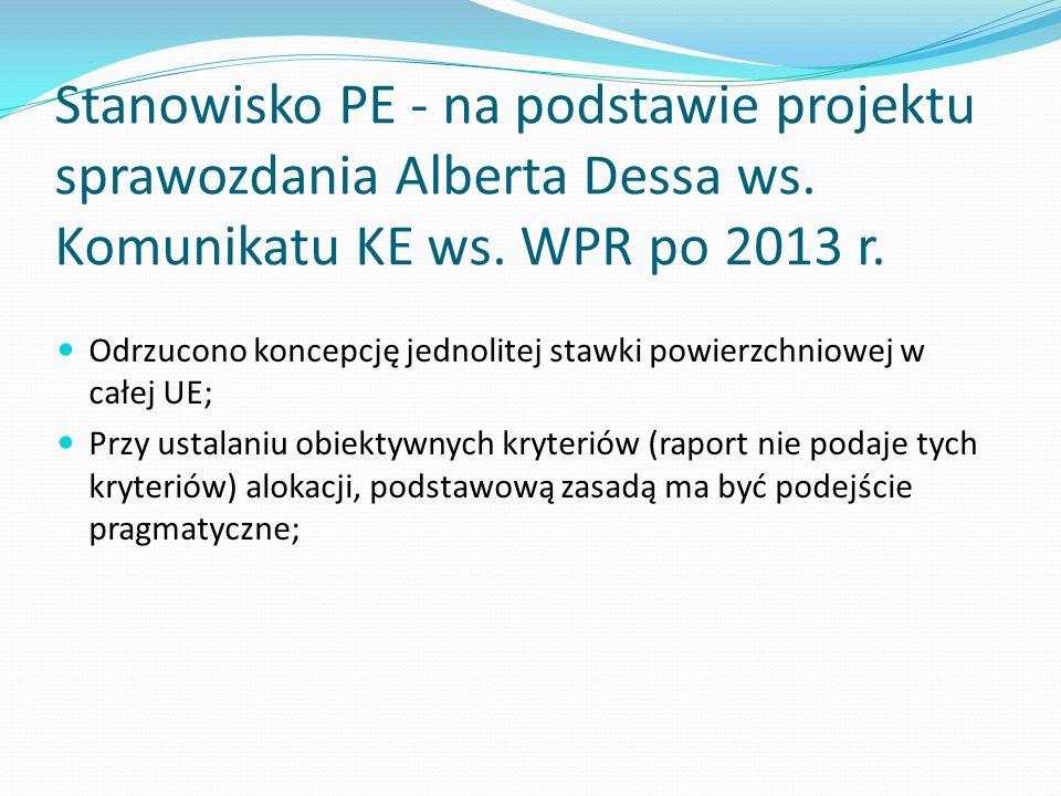 Stanowisko PE - na podstawie projektu sprawozdania Alberta Dessa ws