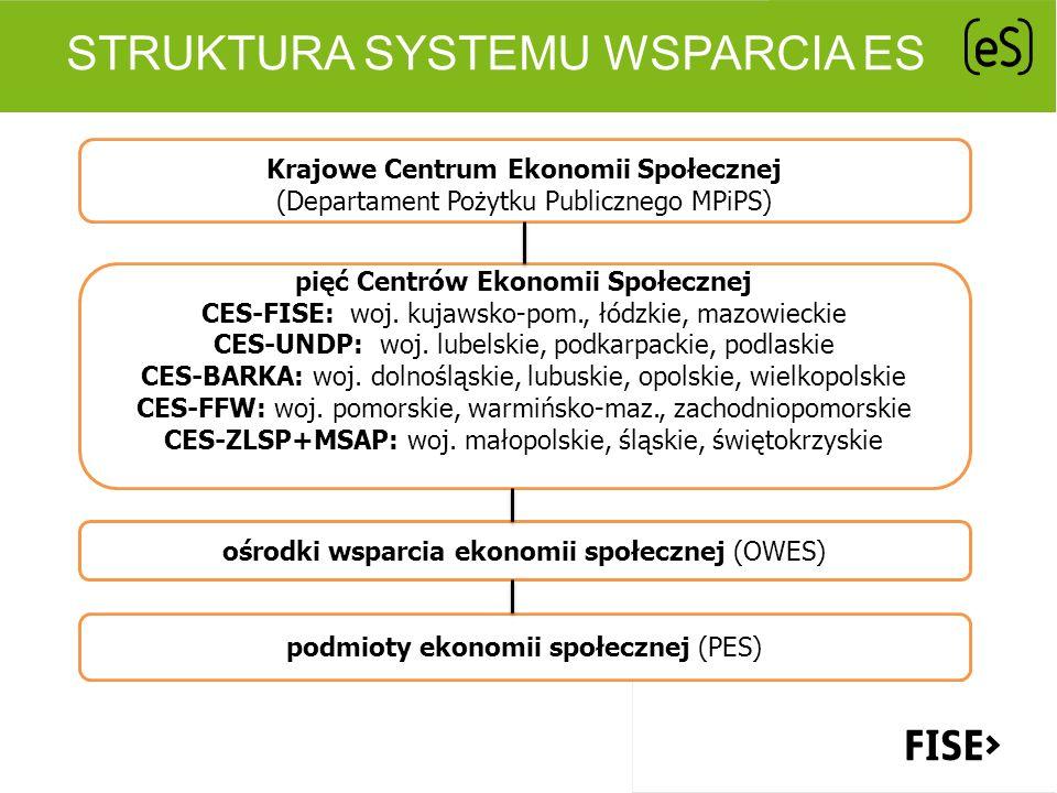 Struktura systemu wsparcia eS