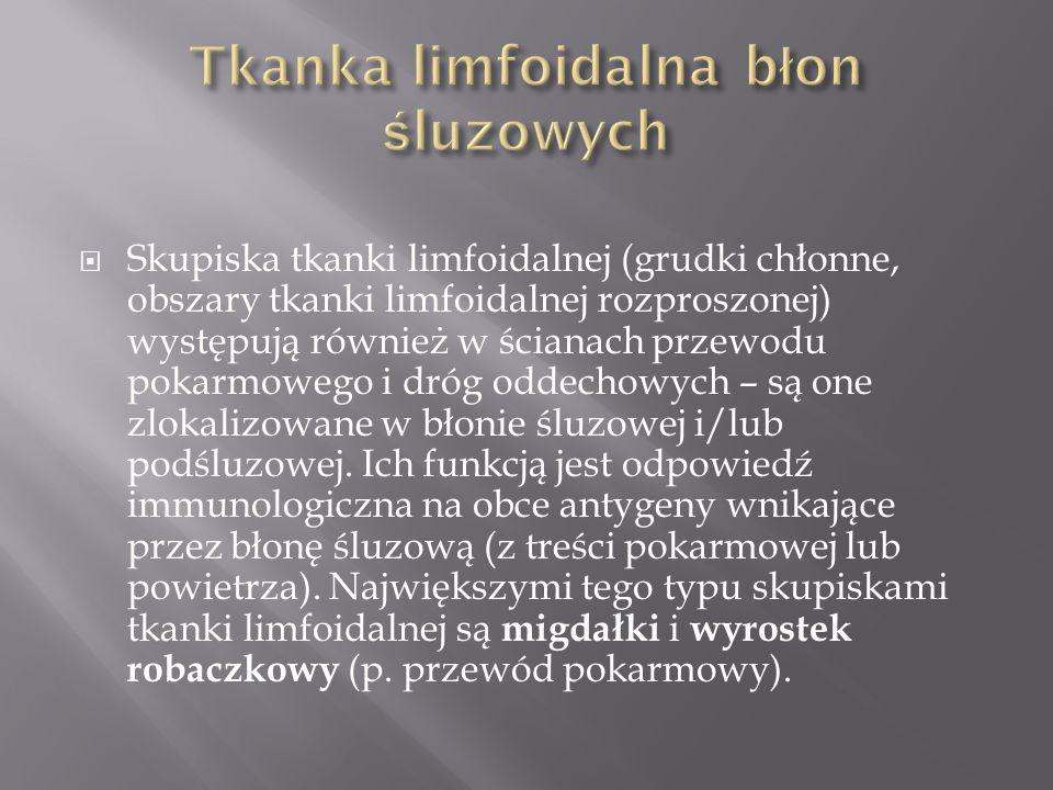 Tkanka limfoidalna błon śluzowych