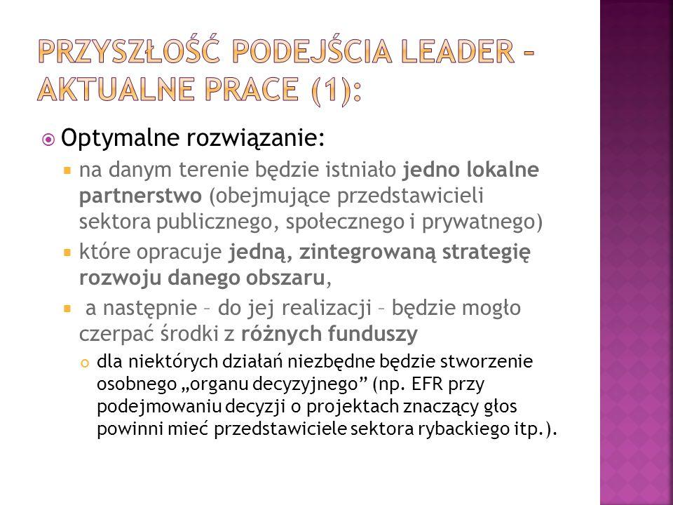 Przyszłość podejścia LEADER – aktualne prace (1):