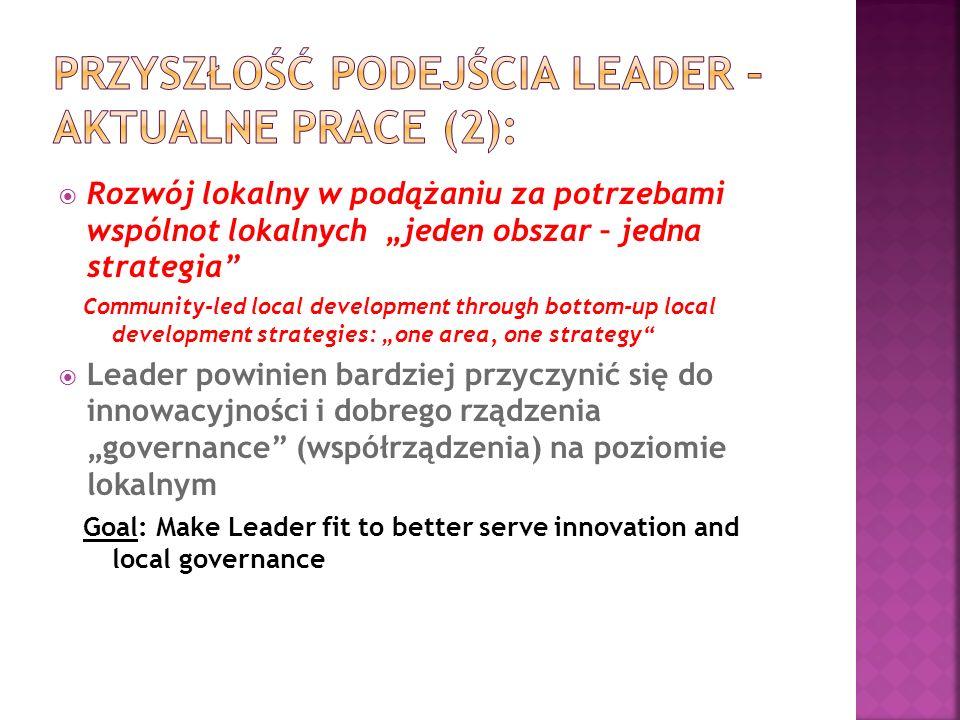 Przyszłość podejścia LEADER – aktualne prace (2):