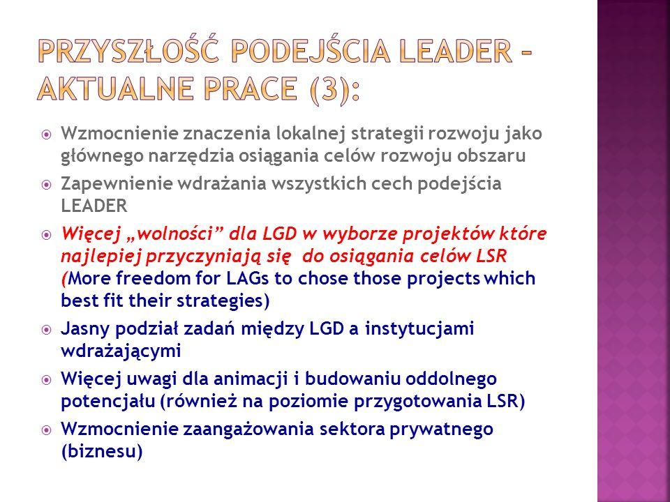 Przyszłość podejścia LEADER – aktualne prace (3):