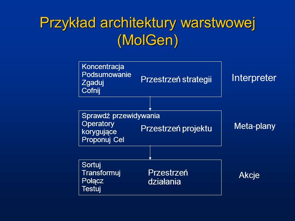 Przykład architektury warstwowej (MolGen)