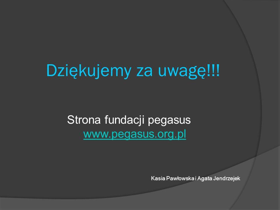Strona fundacji pegasus www.pegasus.org.pl