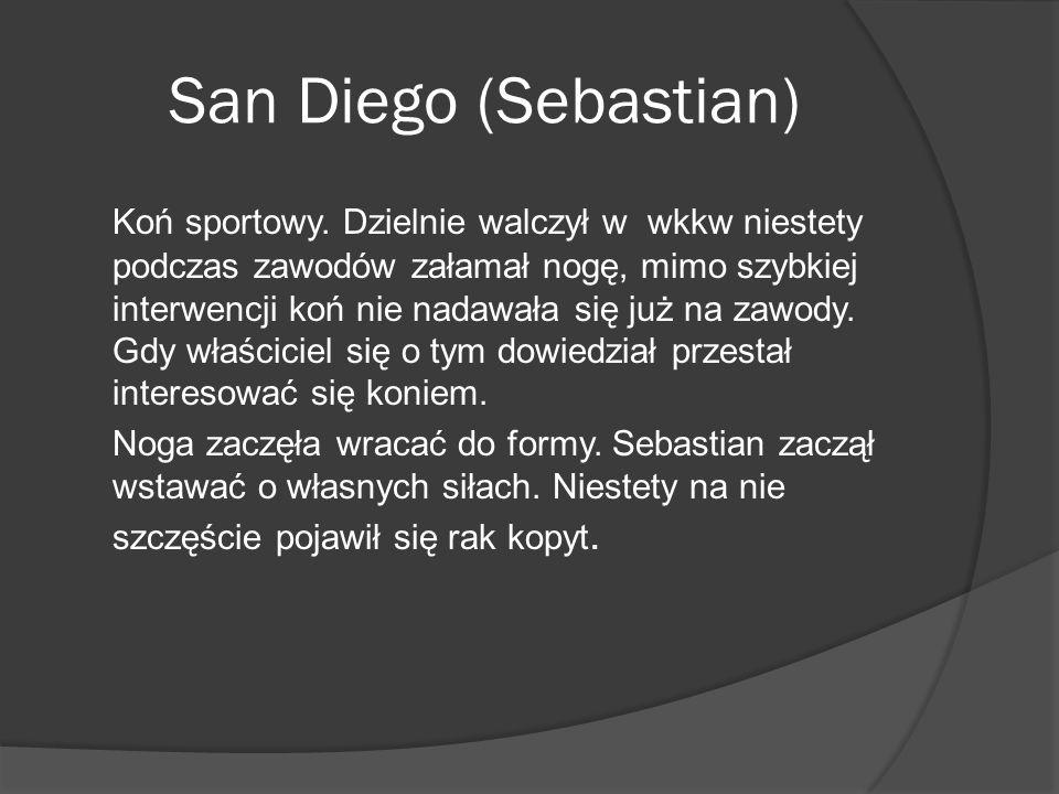 San Diego (Sebastian)