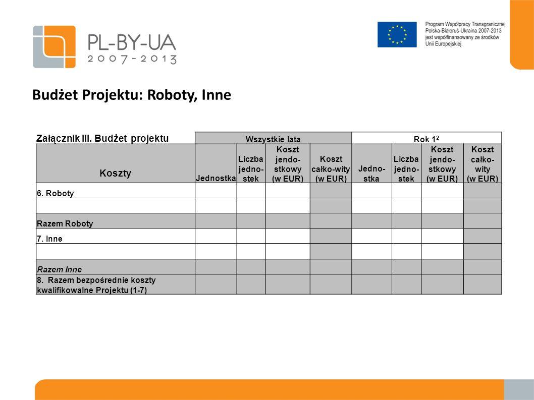 Budżet Projektu: Roboty, Inne