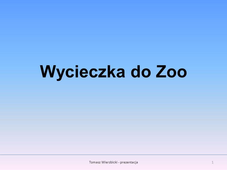 Tomasz Wierzbicki - prezentacja