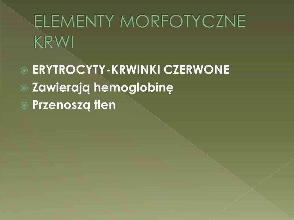 ELEMENTY MORFOTYCZNE KRWI