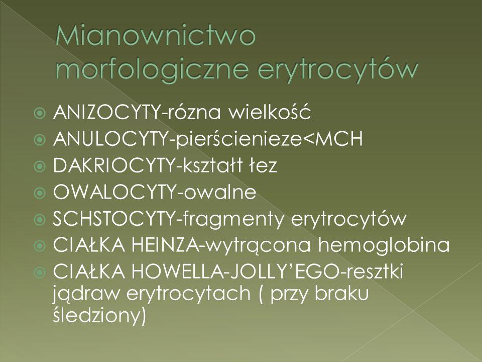 Mianownictwo morfologiczne erytrocytów