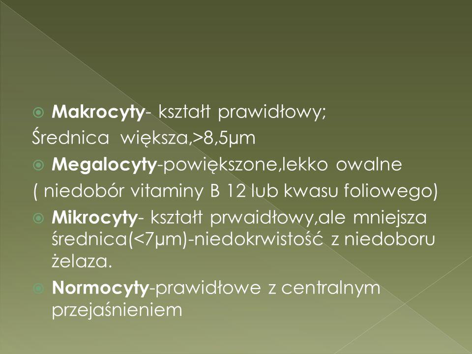 Makrocyty- kształt prawidłowy;