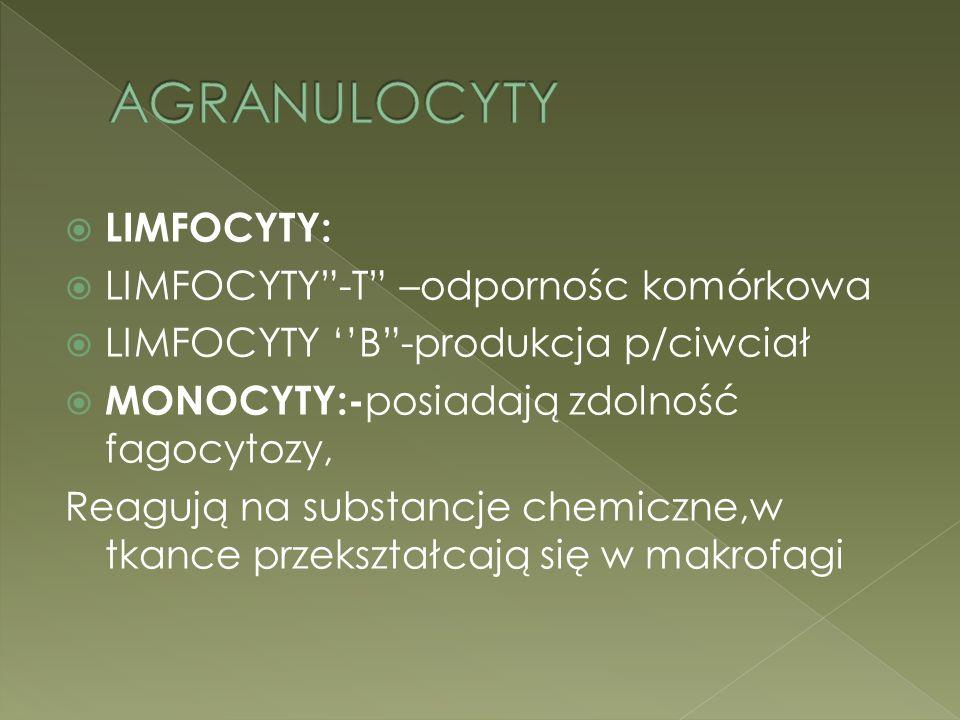 AGRANULOCYTY LIMFOCYTY: LIMFOCYTY -T –odpornośc komórkowa