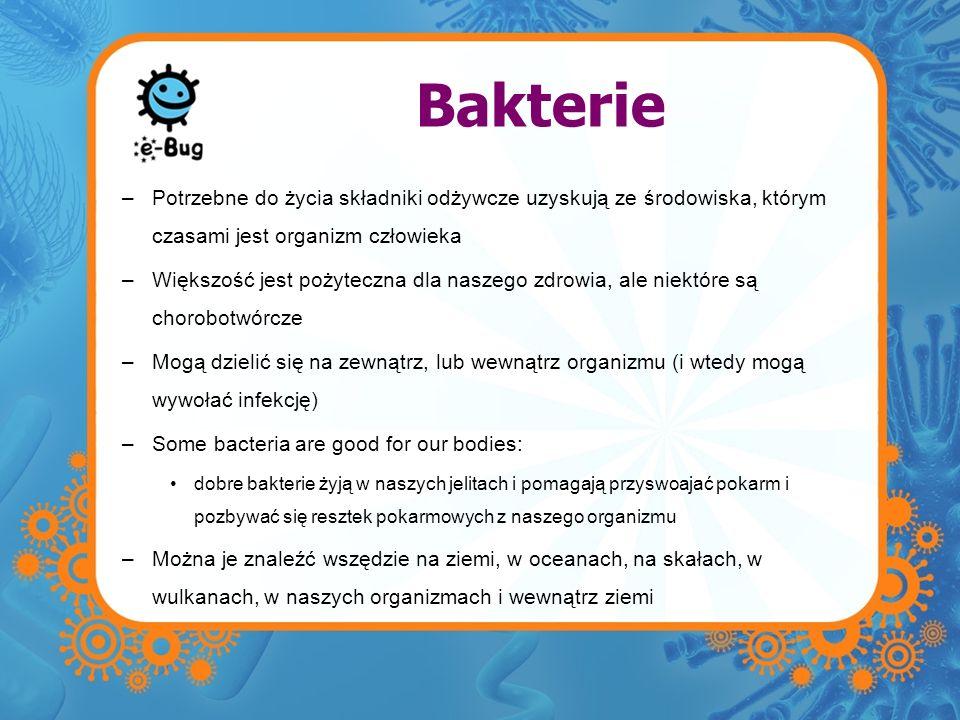 Bakterie Potrzebne do życia składniki odżywcze uzyskują ze środowiska, którym czasami jest organizm człowieka.