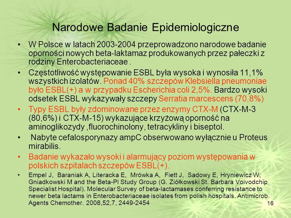 Narodowe Badanie Epidemiologiczne