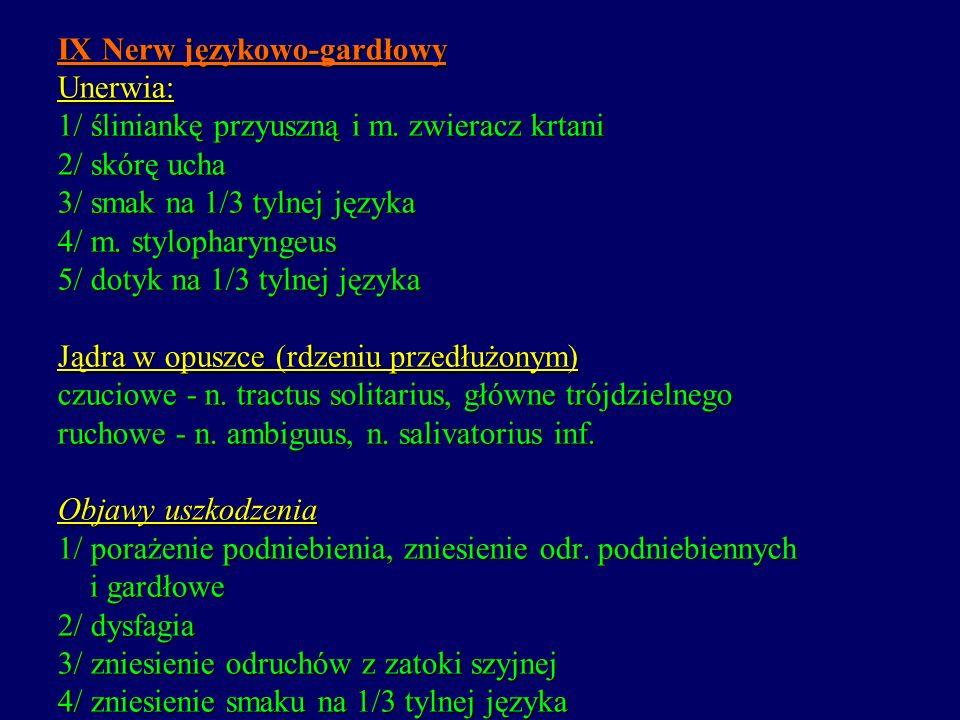 IX Nerw językowo-gardłowy Unerwia: 1/ śliniankę przyuszną i m