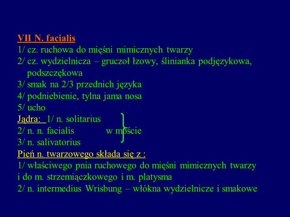 VII N. facialis 1/ cz. ruchowa do mięśni mimicznych twarzy 2/ cz