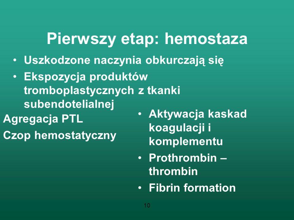 Pierwszy etap: hemostaza