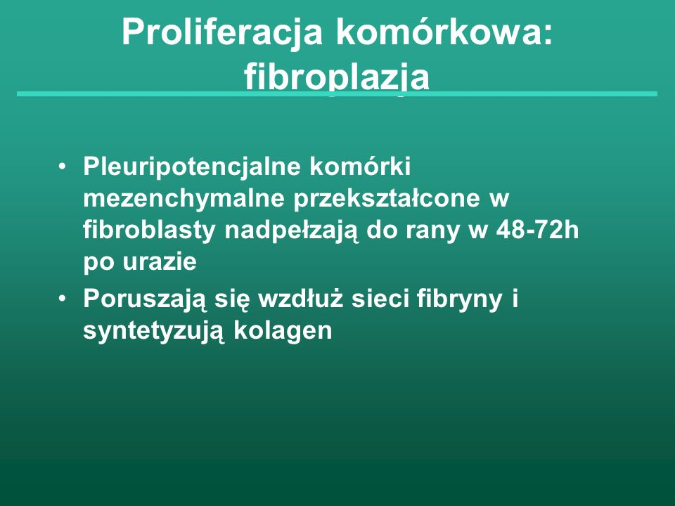 Proliferacja komórkowa: fibroplazja