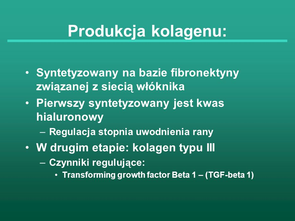 Produkcja kolagenu: Syntetyzowany na bazie fibronektyny związanej z siecią włóknika. Pierwszy syntetyzowany jest kwas hialuronowy.