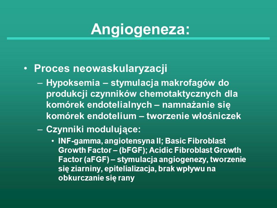Angiogeneza: Proces neowaskularyzacji