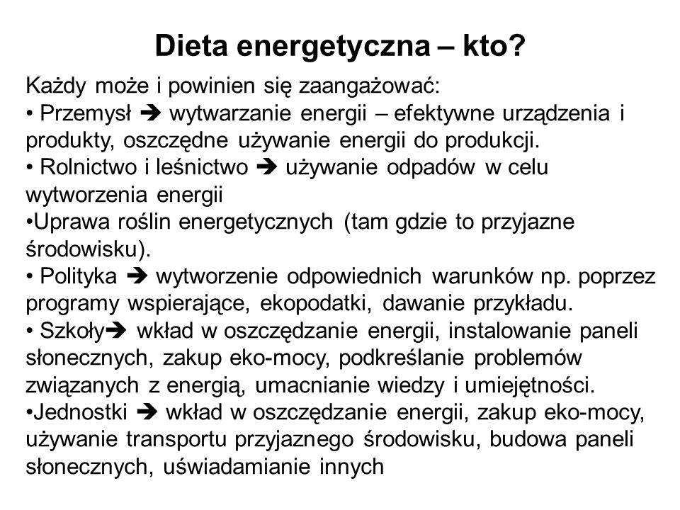 Dieta energetyczna – kto