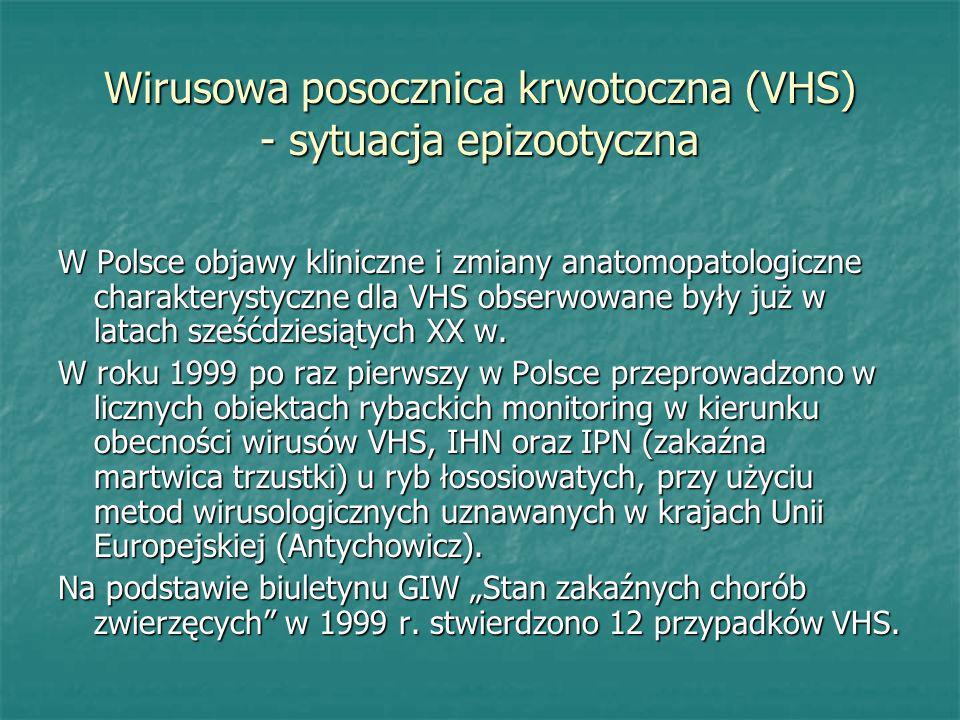 Wirusowa posocznica krwotoczna (VHS) - sytuacja epizootyczna