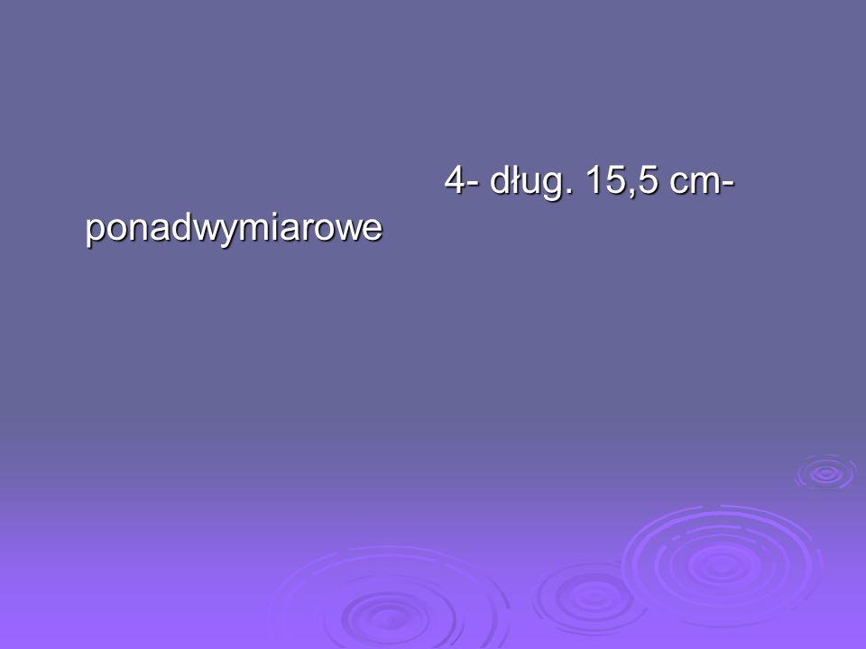 4- dług. 15,5 cm- ponadwymiarowe
