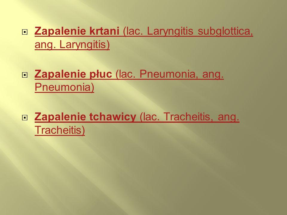 Zapalenie krtani (lac. Laryngitis subglottica, ang. Laryngitis)