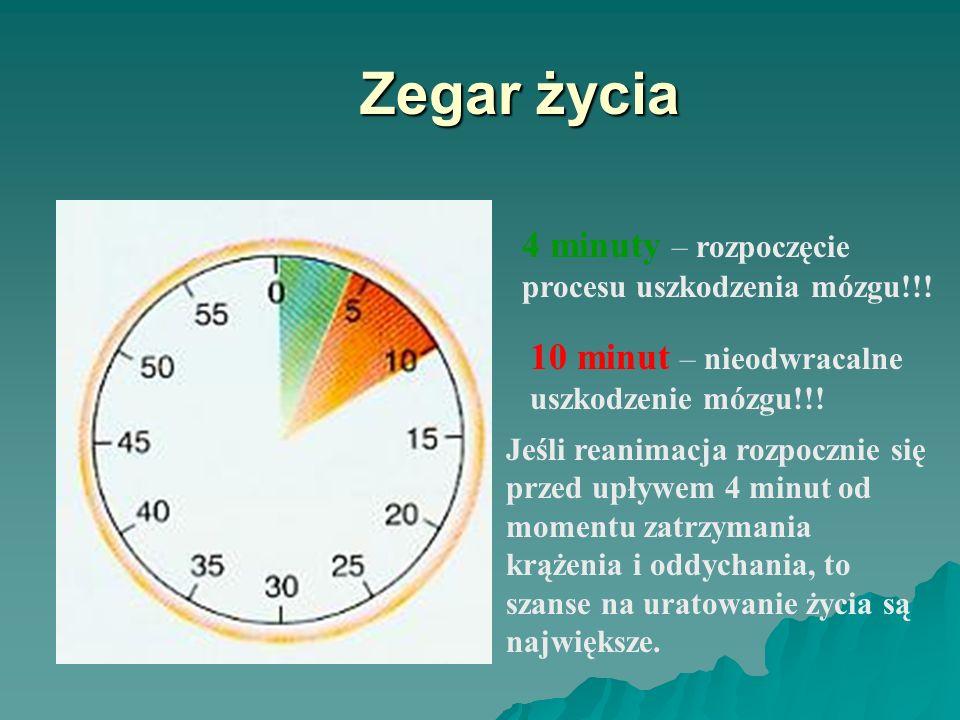 Zegar życia 4 minuty – rozpoczęcie procesu uszkodzenia mózgu!!!