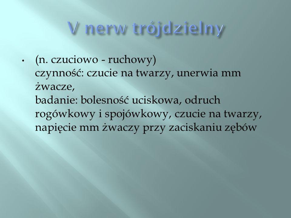 V nerw trójdzielny