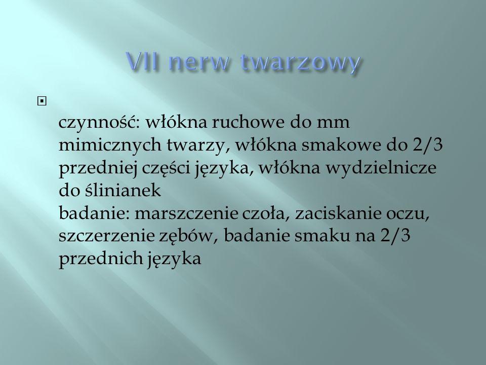 VII nerw twarzowy