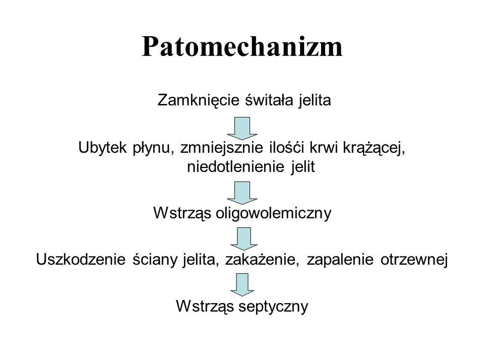 Patomechanizm Zamknięcie świtała jelita