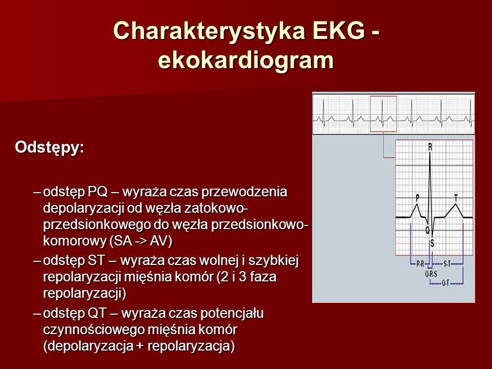 Charakterystyka EKG - ekokardiogram