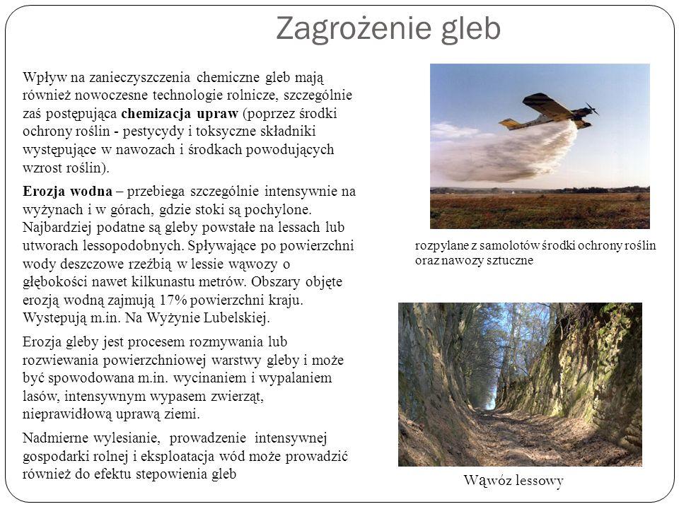 Zagrożenie gleb Wąwóz lessowy