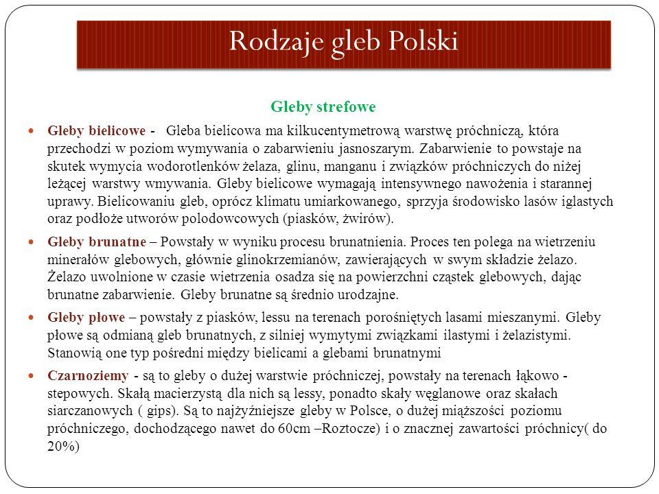 Rodzaje gleb Polski Gleby strefowe