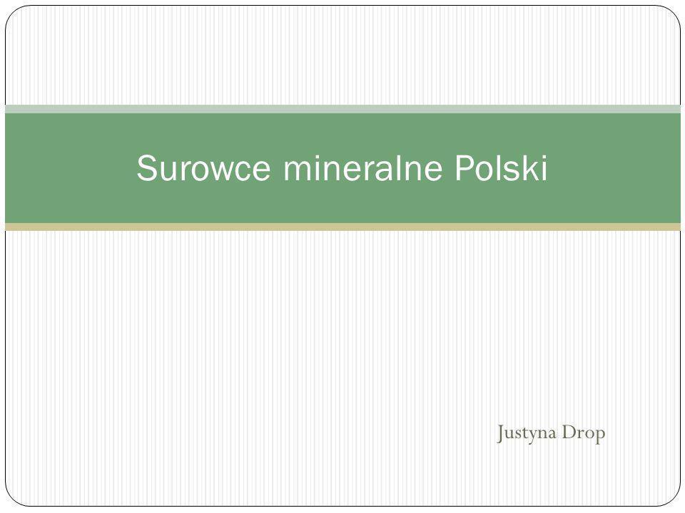 Surowce mineralne Polski