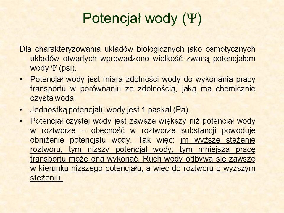 Potencjał wody (Ψ)