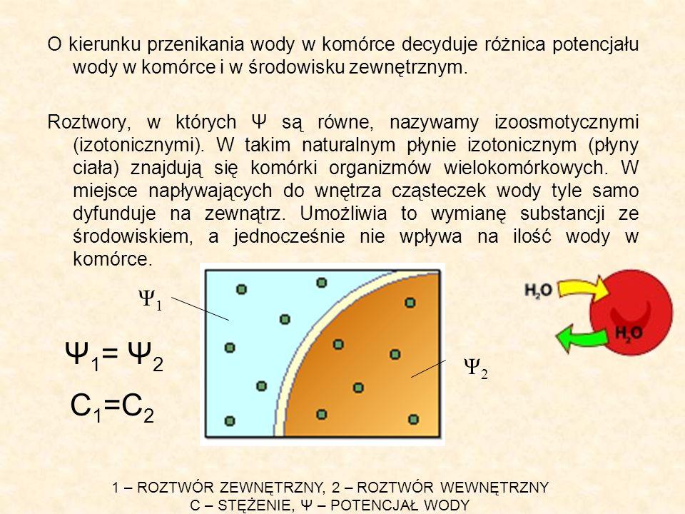 O kierunku przenikania wody w komórce decyduje różnica potencjału wody w komórce i w środowisku zewnętrznym.