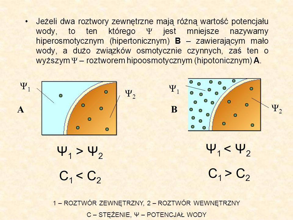 Ψ1 < Ψ2 Ψ1 > Ψ2 C1 > C2 C1 < C2 Ψ1 Ψ1 Ψ2 A B Ψ2