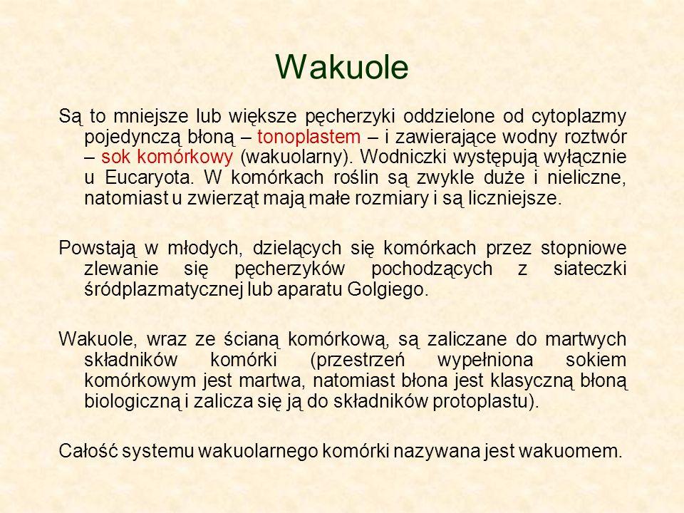 Wakuole