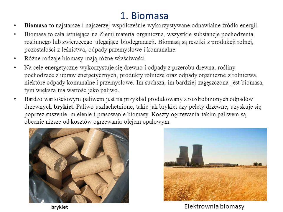 1. Biomasa Elektrownia biomasy